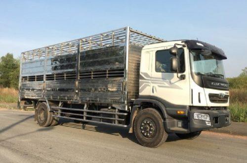 Daewoo 9 tấn chở lợn